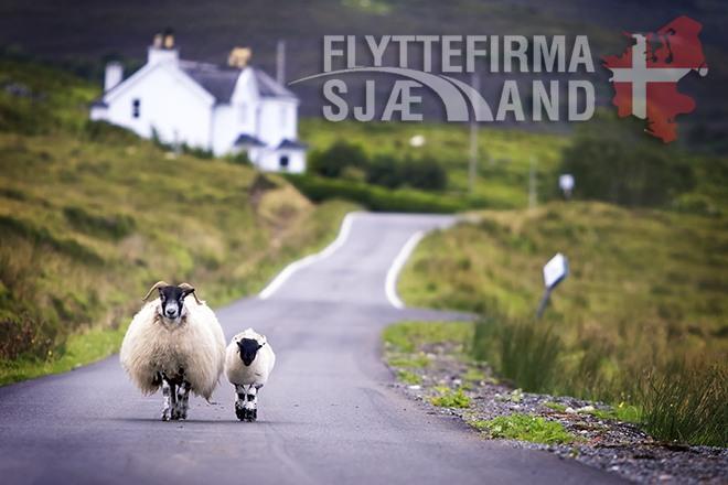Skotland vej